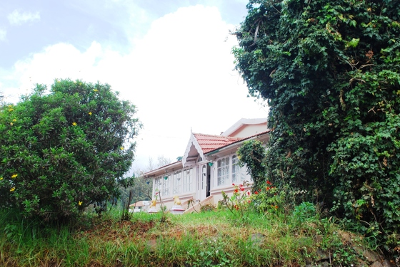 Ooty Family Homestay Cottage In Ooty Homestays Guest