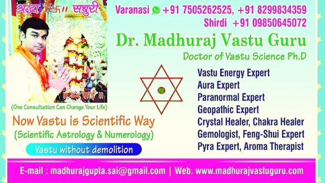Best Vastu Expert In India Best Aura And Paranormal Expert