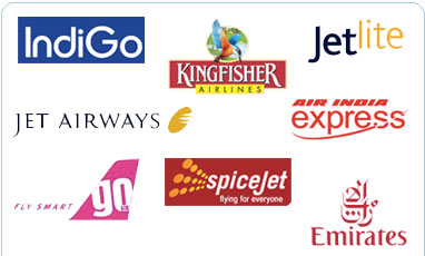 SpiceJet provides booking for large groups, with special discounts and offers. Contact us today for more information. Group booking tool is managed by Infiniti software solutions.