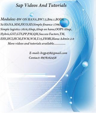 Sap S4hana 1610 Simple Finance Videos And Server Access