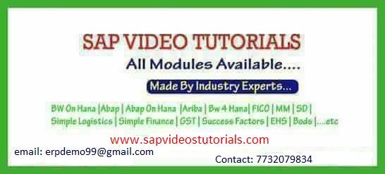 Sap EWM Online Server Access - Professional Course In Abhudaya Nagar
