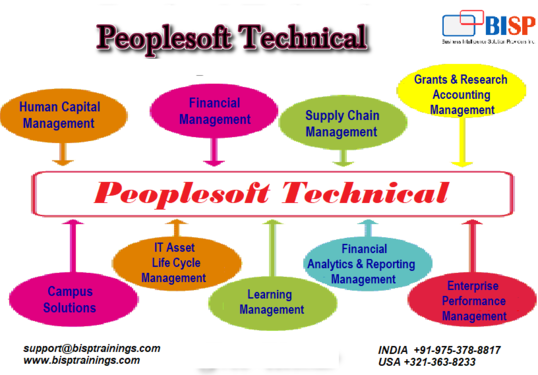 Boost Your Skills With Peoplesoft Technical - Professional Course In ...