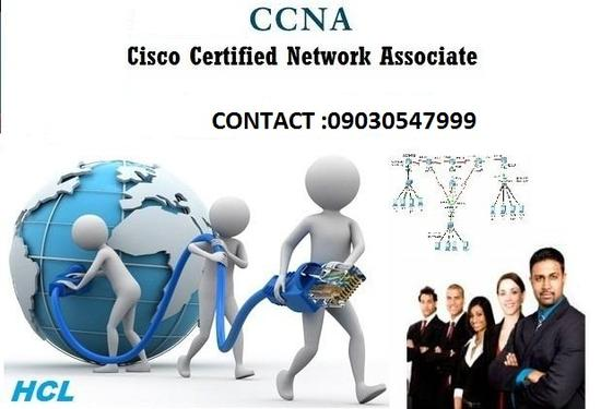 CCNA Training In HCL Tirupati - Professional Course In South