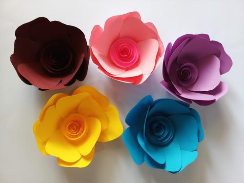Giant Paper Flowers Whole Sale Various Types Uppal