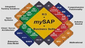SAP Transport Management (TM) Online Server Access