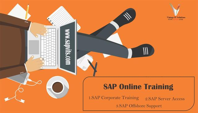 Online SAP Training Courses And Server Access In India UK
