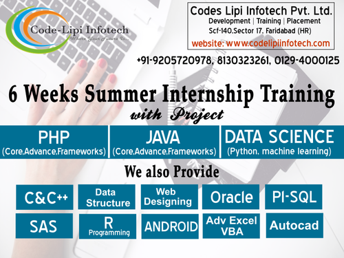 6 Weeks Summer Internship Training In Faridabad - Software