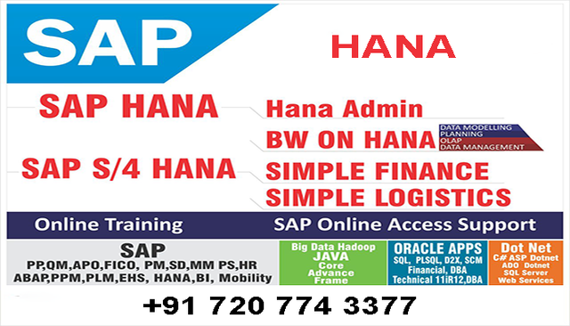 Sap Server Access Providers - Software Training, Application