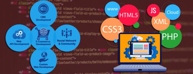 Top Web Application Development Company In Hyderabad