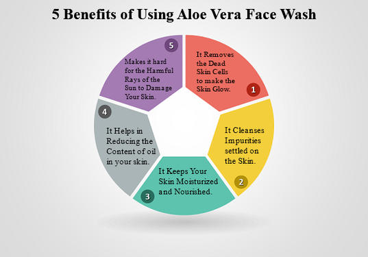 sarvliving aloe vera face was is the only skin care tool