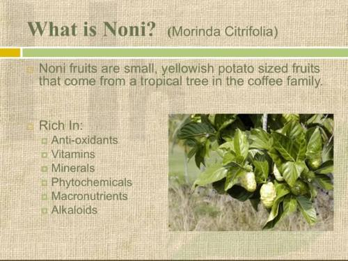 Noni Juice Of Divine Fruit Noni Wellness Product Health Beauty