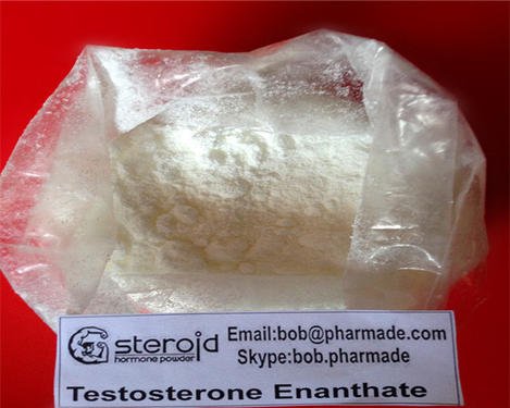 Sustanon 250 Steroid Powder Testosterone Blend - Spa