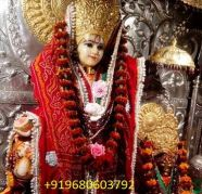 Used, No.1 power full  [+919680603792]   love  expart  baba  ji for sale  India