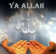 +91-7339788833 LOVE PROBLEM SOLUTION MOLVI JI NEW JERSEY, used for sale  India