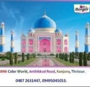 Used, Paint dealers in Thrissur - Mini Colour World 09495045053. for sale  Kanjany
