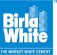 Used, Indias Largest White Cement Exporter Birla White for sale  Andheri East