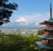 Japan Visa for sale  Deccan