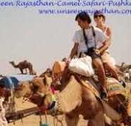 Rajasthan safari tours on the desert by camel car packages for sale  Khandari