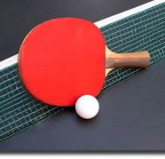 Used, TABLE TENNIS CLASSES IN GURGAON for sale  Gurgaon Sector 15 II