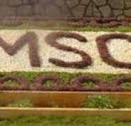Direct admission in BMSCE through Management Quota Bangalore in Gajuwaka for sale  India