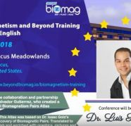 Biomagnetism Training in New Jersey for sale  India
