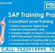 SailPoint Identity IQ Online Training Ecorptraining
