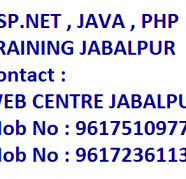 php major project training classes jabalpur for sale  India