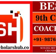 9th Class Coaching in Chandigarh for sale  India
