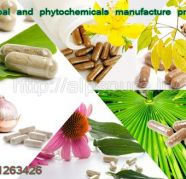 Herbal extract supplier natural tablet for sale  India