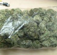 We offer top shelf medical marijuana  here you can order now for sale  India