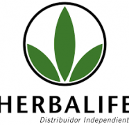 Herbalife independent distributor in Delhi Yadav park, used for sale  India