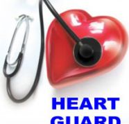 ANTI RADIATION HEART GUARD for sale  India
