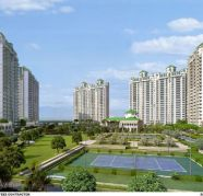 Group 3 Realtors in gurgaon for sale  India